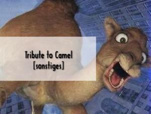 Die legendäre Camel-Kampagne